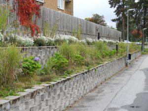 Stenmur ger trädgården olika nivåer.